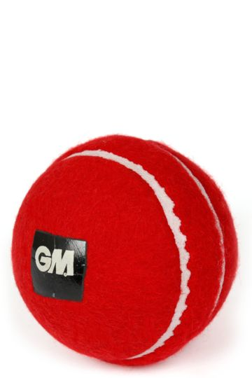 Training Cricket Ball